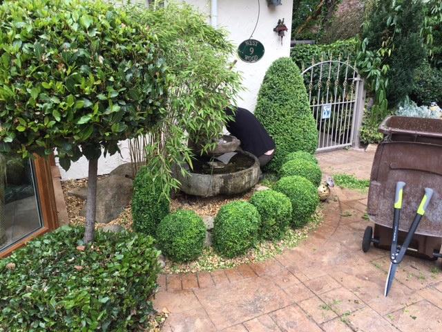 Wirral Gardener