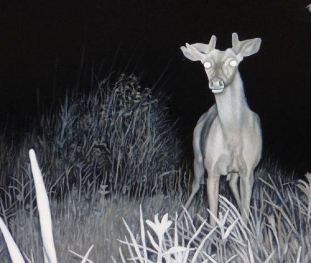 Night Vision Paintings By Valerie Mangion Valerie Mangion Giraffe Deer 2015  Inches Oil