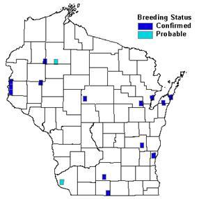 Wisconsin All-Bird Conservation Plan