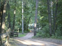O'Neil Creek Campground2