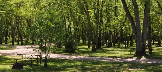 River Bay Premier Camping Resort4
