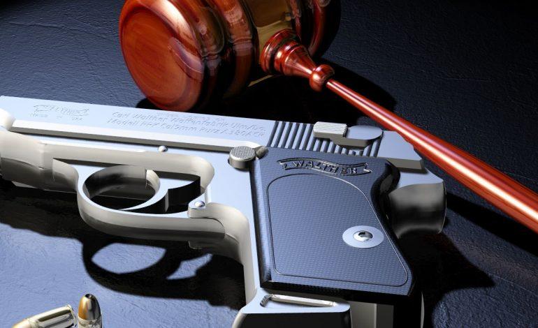 Gun Control Fight Starts in Two Days!