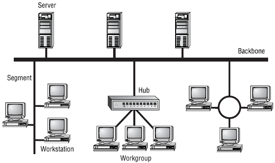 Network Elements in Networking Tutorial 30 August 2019