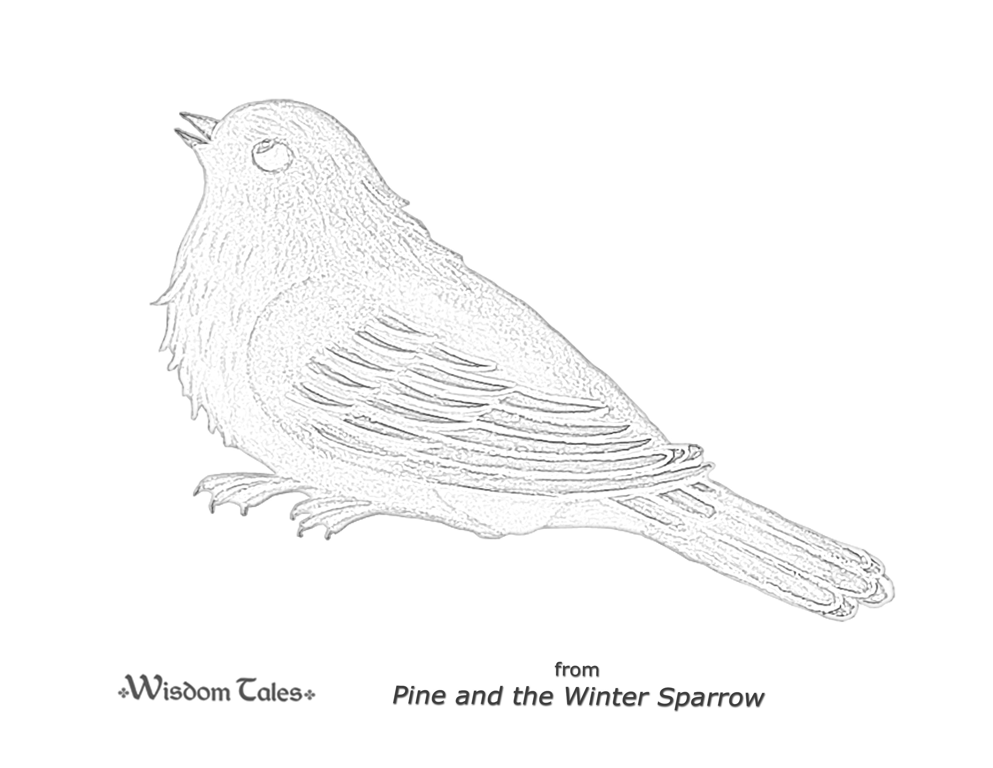 Pine and the Winter Sparrow (ISBN 978-1-937786-33-5) by