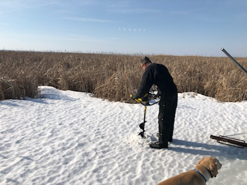 Valley Wood Duck Box Install March 2020.5