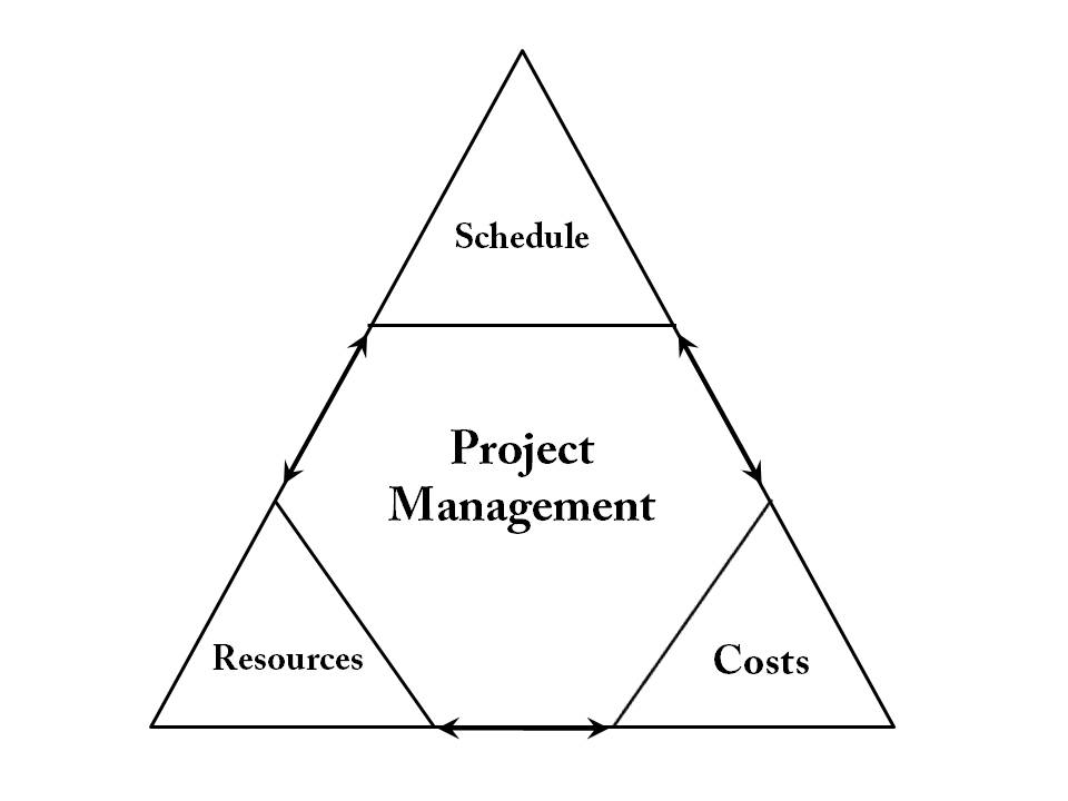Wisely Project Management Consultant