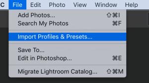 Lightroom CC import presets