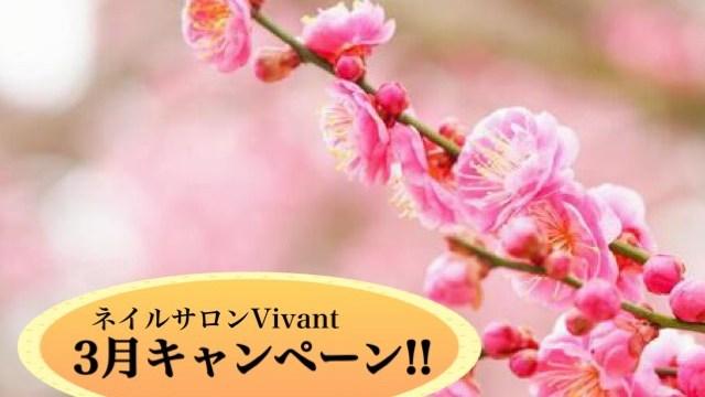 ネイルサロンヴィヴァン3月キャンペーン!!初出し情報あり!
