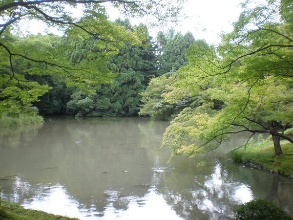 Kyoto botanički vrt – Wish