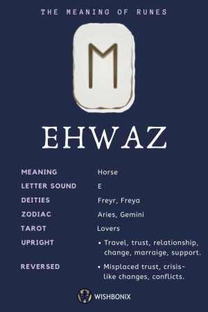 Rune Ehwaz Infographic