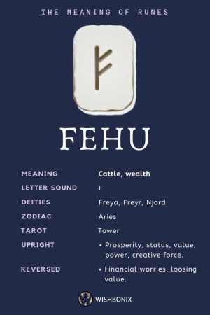Rune Fehu Infographic