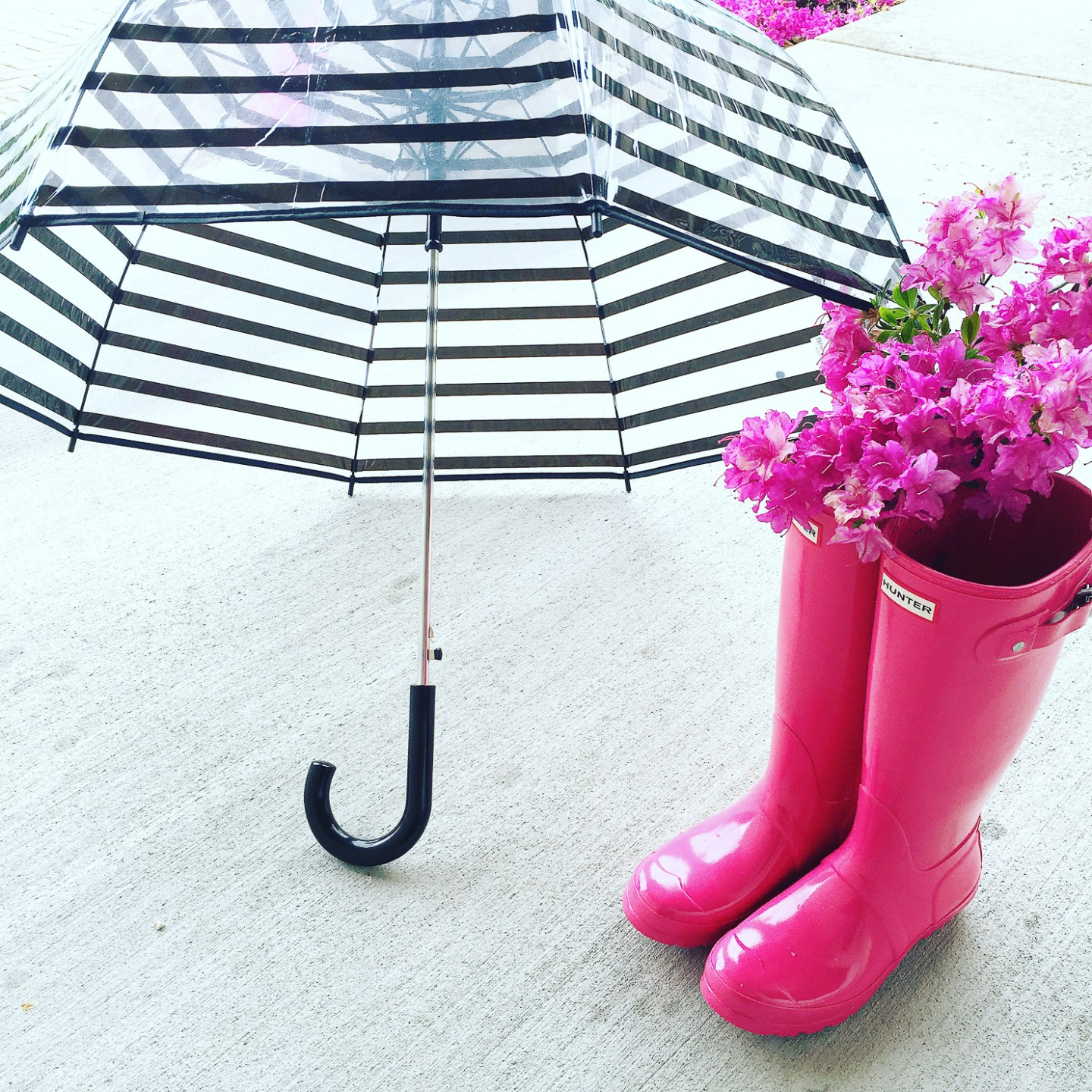 striped-clear-umbrella-and-pink-hunter-rainboots