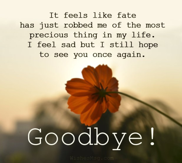 Emotional Goodbye Messages For Someone You Love