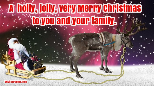 funny merry christmas images