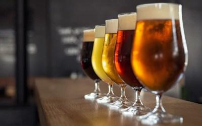 Beer Tasting is Back