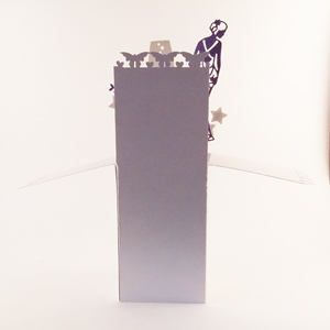 Handmade pop-up box card with dress, shoe, champagne and star features. Will you be my bridesmaid?
