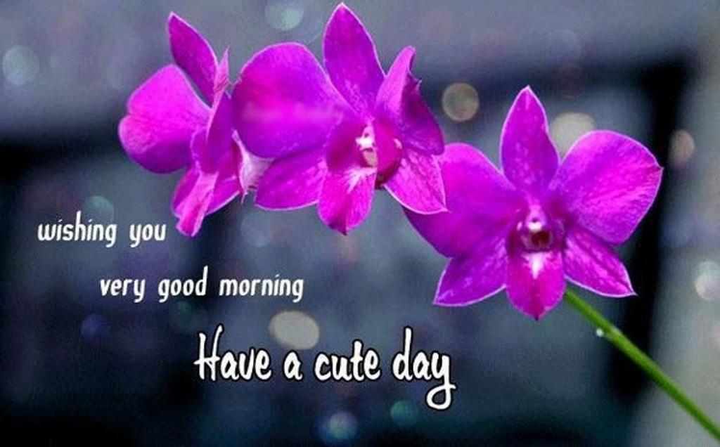 wishing you very good