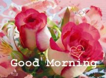 Good Morning Wishes With Flowers Pictures, Images - Page 51