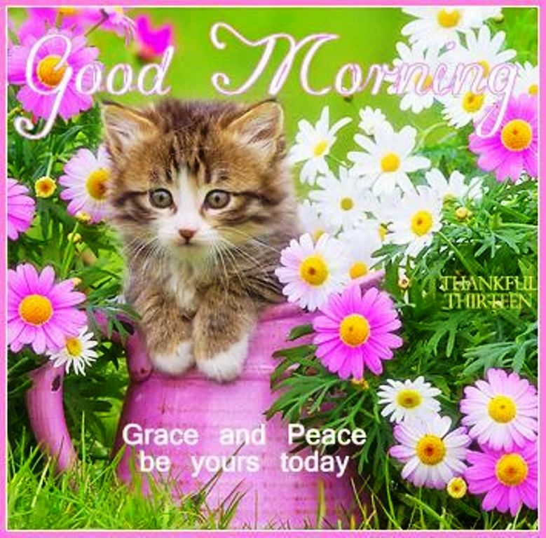 grace and peace be