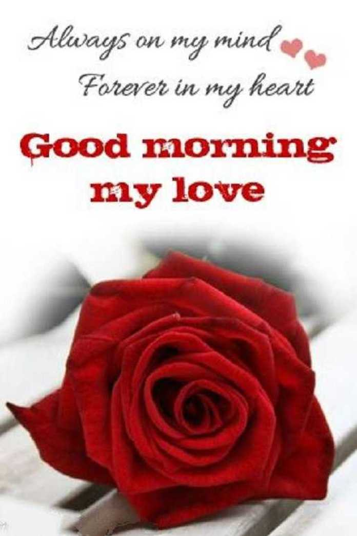 Good Morning Text - Good Morning Messages For Her