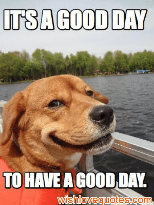 have a good day meme