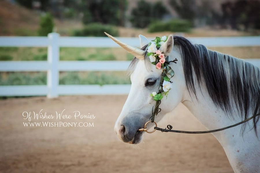 Unicorn Horn for Horse Pony