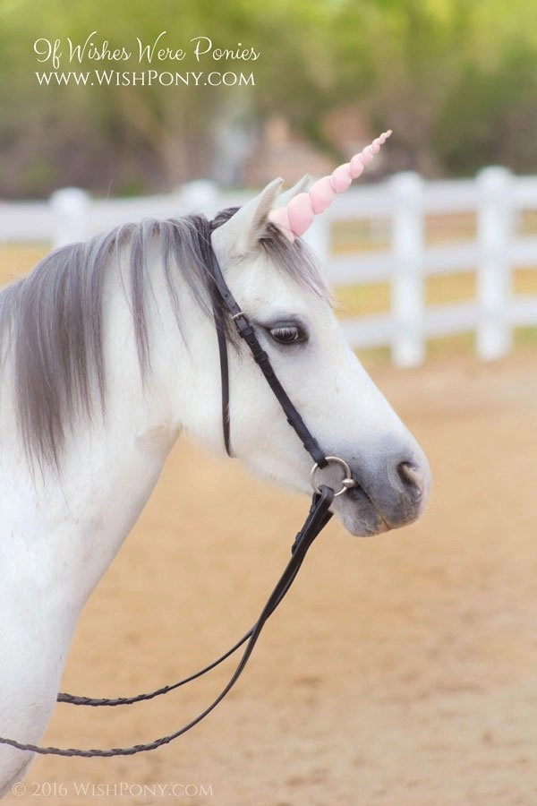 Pink Unicorn Horn for Pony