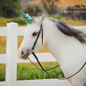 Jade Unicorn Horn