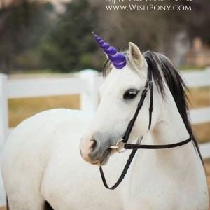 Purple Unicorn Horn