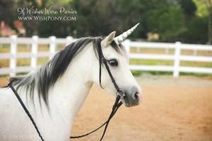 Silver Unicorn Horn