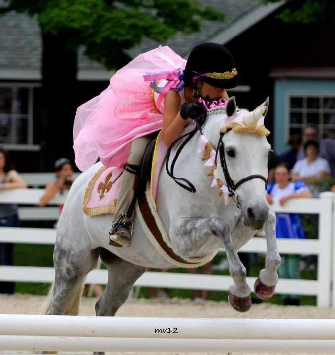 Princess/Carousel Unicorn Browband™ Barding Set