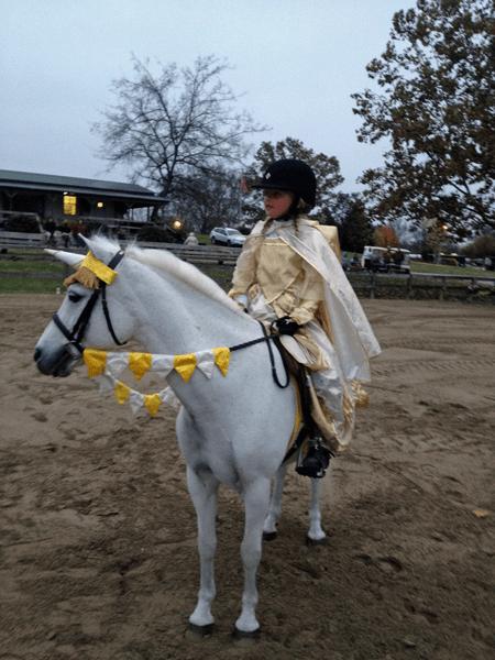 Unicorn Browband™ Princess Barding Set