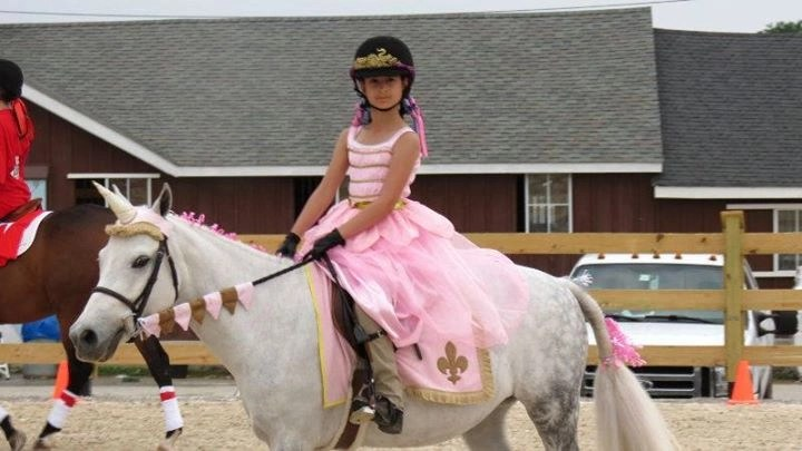 Princess Set with Unicorn Browband™ and Rein Covers