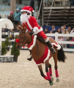 Reindeer Antlers & Victotrian Christmas Set