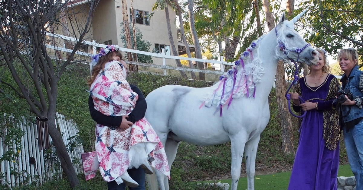 Make A Wish Unicorn Project If Wishes Were Ponies