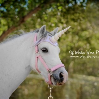 Ivory Unicorn Browband