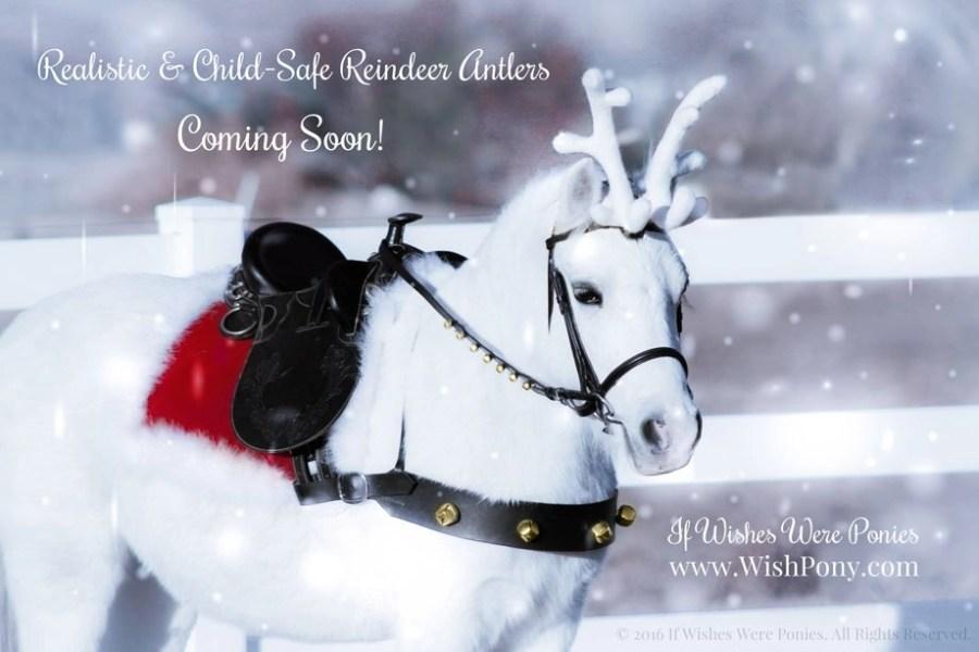Reindeer Antlers for Horses