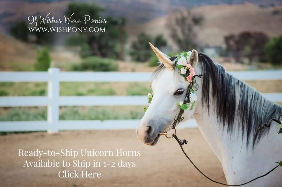 New Ready-to-Ship Unicorn Horns Available