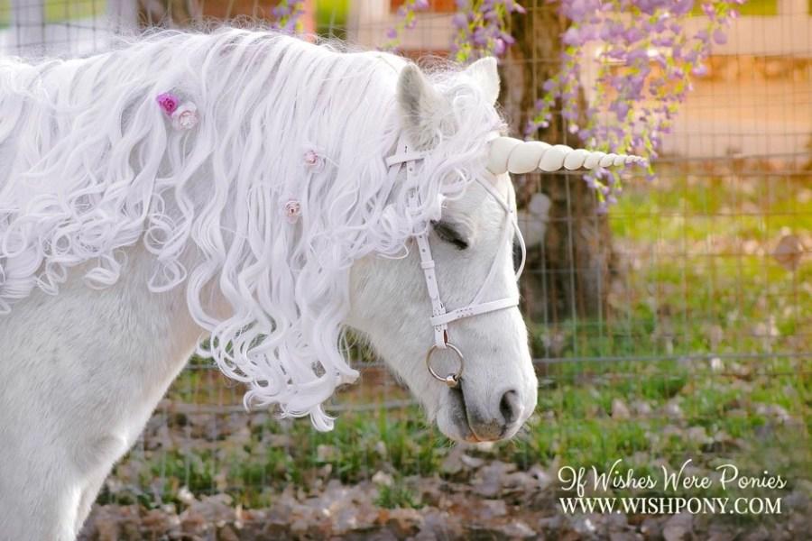 WishPony Ivory Unicorn