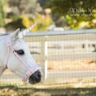 White Unicorn Horn for Horse Pony