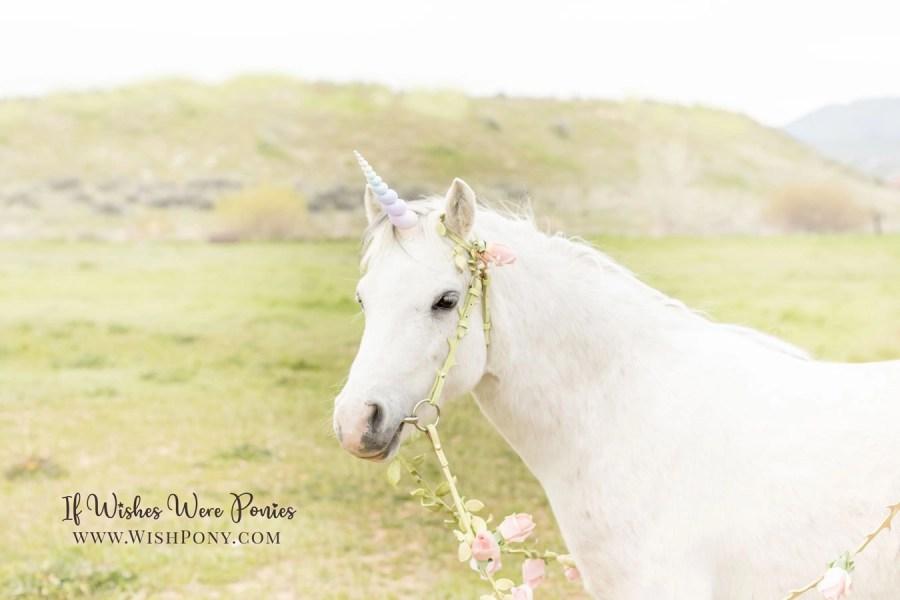 Romantic rainbow unicorn with floral vine bridle