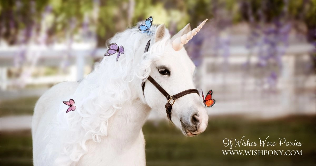 Friendly Butterfly Noseband Monarch Butterfly For Horse