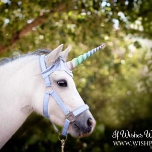 Rainbow Unicorn Browband for Horse Pony