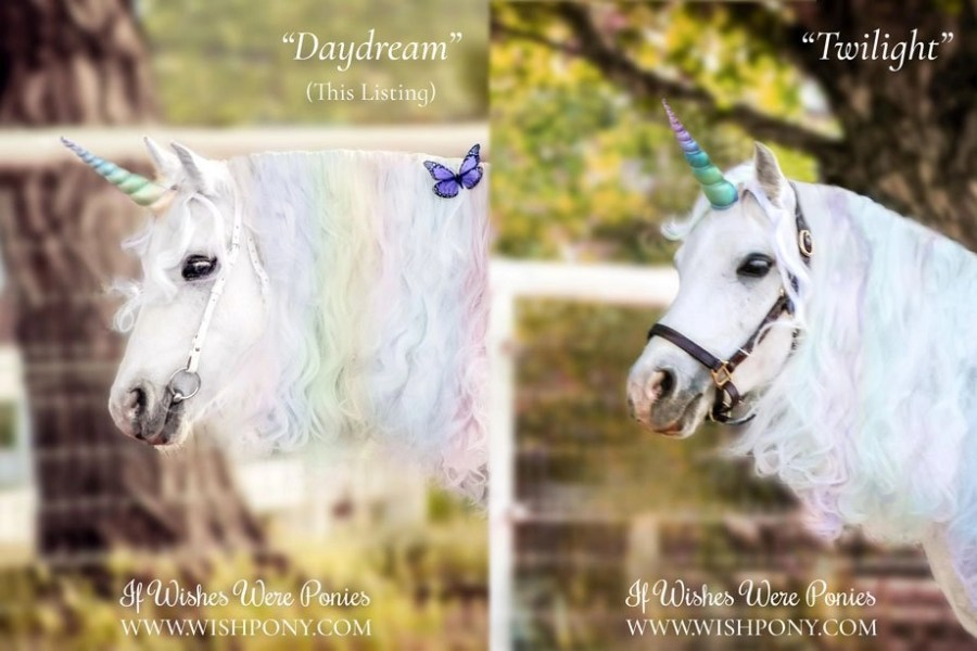 Pastel Unicorn Horn for Horse Pony