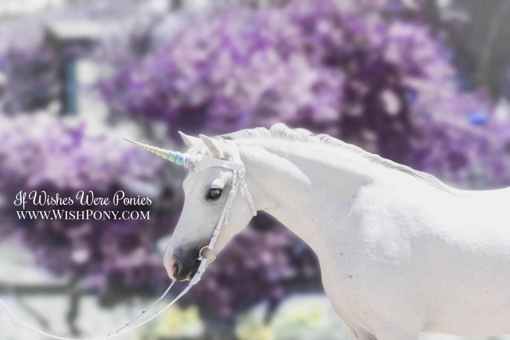 WishPony White Leather Rainbow Unicorn Browband for Horses & Ponies