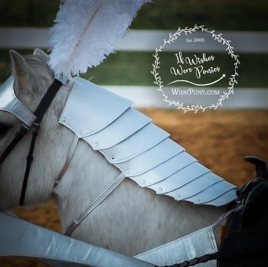 WishPony Armoury Crinière Neck Armour for Horses and Ponies - Custom ...