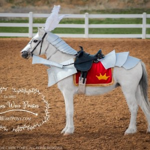 Steed armour costume for Ponies