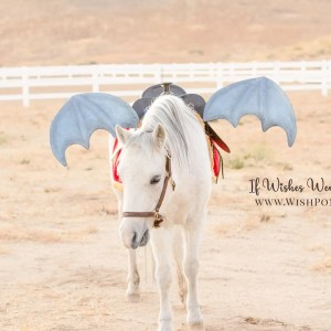 Wishpony.com Metallic Blue Dragon Wings for Horses