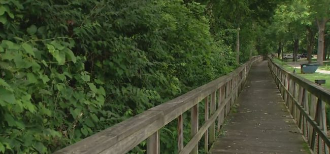 delphi trail safety_673308
