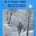 Lost in a Sugar Creek Blizzard book cover